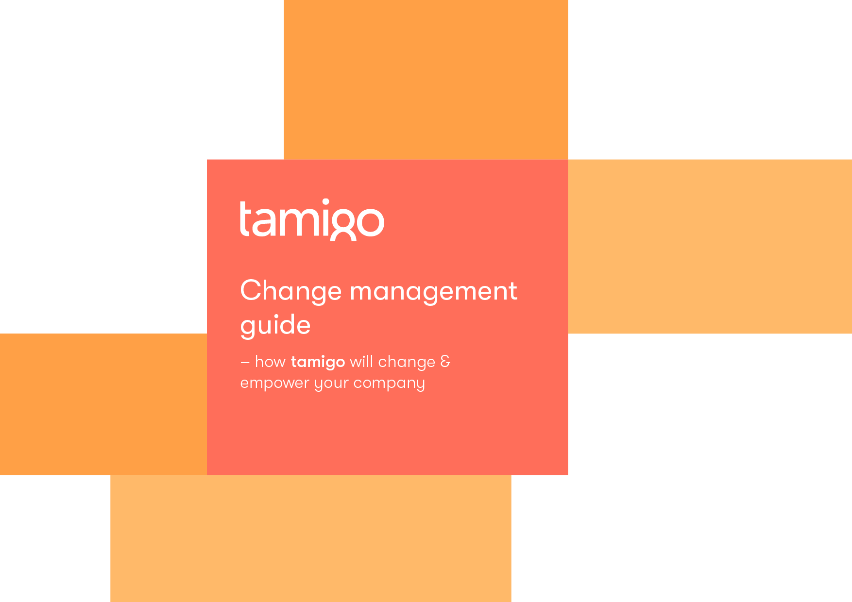 tamigo Change Management Guide picture